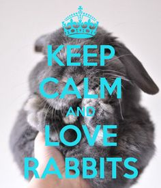 I chose this image for Lennie because he dreams of rabbits