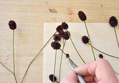 NATURKINDER: Garden Burnet Woodprint