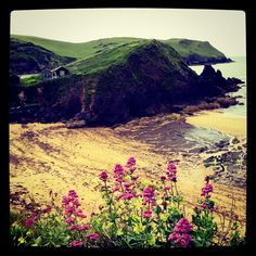 Hope Cove - Devon