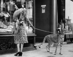 Phyllis Gordon- Taking her Pet Cheetah shopping in London c.1939  :Old Antique Vintage Photograph Photo Art Print -Reproduction by PhotosandBacon on Etsy https://www.etsy.com/listing/190402250/phyllis-gordon-taking-her-pet-cheetah