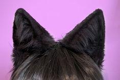 Black Faux Fur Wolf or Large Cat Ears Cat-sessorize! Little Kittens, Little Pets, Cat Cosplay, Anime Cosplay, Celebrity Dads, Celebrity Weddings, Wolf Ears, Blake Belladonna, Metal Headbands