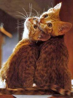 l'amour c'est regarder ensemble dans la même direction....
