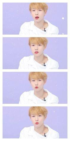 Huang Renjun has 2 crushes named Lee Jeno and Na Jaemin. Nct Dream, Nct 127, Huang Renjun, Dream Chaser, Na Jaemin, Kpop, Jaehyun, Cute Wallpapers, Boy Groups