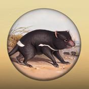 Field Guide to Tasmanian Fauna by Tasmainian Museum and Art gallery. Free