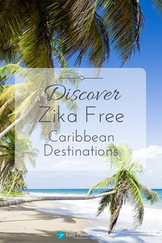 Discover Zika free Caribbean destinations   Easy Planet Travel - World travel made simple