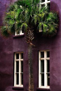 Andrej Milas | Charleston Style (South Carolina, USA)