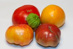Homegrown tomatoes, fully ripened on the vine, have a unique flavor that cannot be duplicated with commercial varieties bought in the shops. Growing your own is very rewarding and easy if you follow the tips provided.