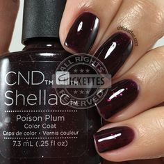 CND Shellac Poison Plum - My best nail list Shellac Nail Colors, Cnd Nails, Black Shellac Nails, Shellac Toes, Acrylic Nail Powder, Manicure Y Pedicure, Nagel Gel, Nails Inspiration, Beauty Nails
