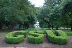 Sweetheart Circle at GSU Georgia Southern University, Golf Courses, Gatos