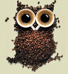 One of my favorite images, I like the use of coffee beans so I think this images is extremely creative and very unique in how the coffee beans build the image of an owl and the coffee cups represent the eyes. Owl Coffee, I Love Coffee, Coffee Art, Best Coffee, Coffee Break, Coffee Shop, Coffee Cups, Morning Coffee, Coffee Lovers