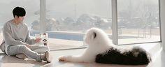 Uncontrollably Fond Dog: PORORO | K-Drama Amino Bae Suzy, Kim Woo Bin, Uncontrollably Fond Kdrama, 7 First Kisses, Doctor Stranger, W Two Worlds, Korean Actors, Korean Dramas, While You Were Sleeping