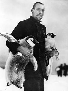 Hubert Hudson, Navigating officer of the Endurance pictured with two emporer penguin chicks.