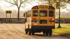 lipsense offers - Created with BeFunky Photo Editor School Bus Driver, School Buses, School Choice, School Videos, New Law, School Subjects, School District, First Day Of School, Public School