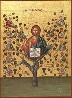 "Christ Tree - Orthodox icon of Jesus Christ Pantocrator, ""The Vine"" Christ Pantocrator, Religious Icons, Religious Art, La Salette, True Vine, Byzantine Icons, The Good Shepherd, Orthodox Christianity, Orthodox Icons"