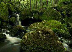 Padley Gorge2, via Flickr.