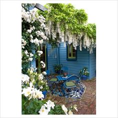 Mosaic tiled patio in small cottage garden with climbing Rosa and Wisteria on pergola. Blue painted house and furniture. No. 11, Christchurch, New Zealand