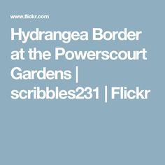 Hydrangea Border at the Powerscourt Gardens   scribbles231   Flickr