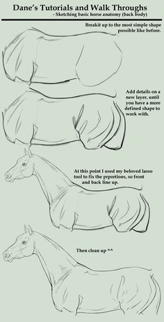 Draw Pattern - How to draw a horse Tutorial Walk Through - sketching a horse body - CoDesign Magazine Daily-updated Magazine celebrating creative talent from around the world # Drawing Techniques, Drawing Tips, Painting & Drawing, Knife Painting, Sketch Drawing, Horse Drawings, Animal Drawings, Art Drawings, Art Tutorials