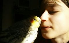 My son & Harley.  Three hours before he traded his feathered wings for his angel wings on 12-31-13...