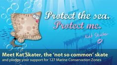 Marine Conservation Society: UK Charity protecting our seas, shores and wildlife