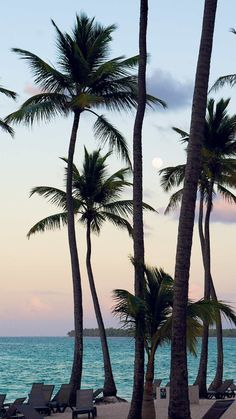 Barceló Bávaro Beach Resort Dominican Republic