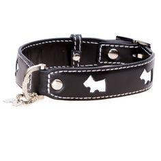 Pet Accessories -- Dog Collar Hamish Black