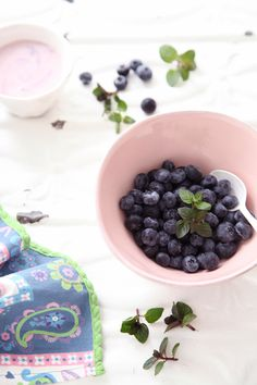 Blueberry  with Caspian Sea yogurt