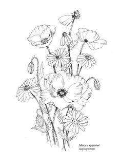 Beaded Embroidery, Embroidery Patterns, Wood Burning Art, Pyrography, Easy Drawings, Adult Coloring, Poppies, Watercolor, Artwork
