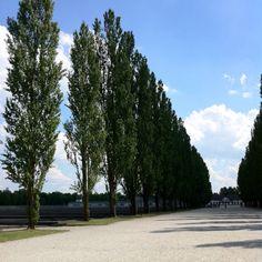 Dachau 2011