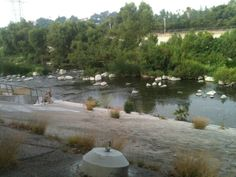 LA River Atwater Village Atwater Village, River, Outdoor, Outdoors, Outdoor Games, The Great Outdoors, Rivers