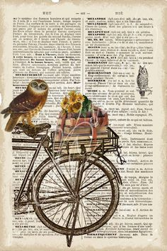Owl on bike + french dictionary page.
