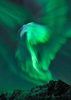 The aurora borealis,