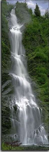 This is Bridal Veil Falls along the Richardson Highway near Valdez, Alaska. This photo was published as a poster by Galaxy of Graphics a couple of years ago and is available in 2 different size poster prints. Panoramic Photography, Forest Photography, Landscape Photography, Waterfalls Photography, Beautiful Waterfalls, Beautiful Landscapes, Picture Places, Nature Pictures, Amazing Nature