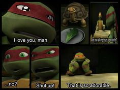 ❤Lol I love that Raph has a pet turtle named spike and talks to him it's so adorable!❤