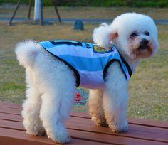 ペット服  ■犬服 ワールドカップ国タンク~<br>ブランド名<br>adidog <br>dogドック服 <br>| ペット用品 ペット服 <br>| ドッグウェア 犬服 <br>| リボン かわいい <br>| トレーナー <br>