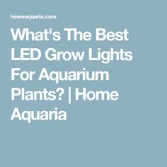 What's The Best LED Grow Lights For Aquarium Plants? | Home Aquaria