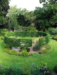 A round gravel garden cut out of a sunny lawn, encircled by a pleached hornbeam hedge. Fruit Garden, Garden Trees, Garden Hedges, Garden Art, Formal Gardens, Outdoor Gardens, Small Gardens, Hornbeam Hedge, Buxus
