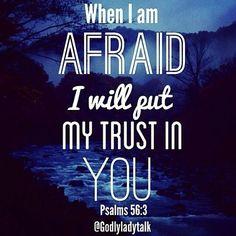 Psalms 56:3