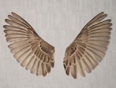 SPARROW WINGS real bird parts for taxidermy crafts, feather jewelry, mask, hat, and doll making. $19.00, via Etsy.