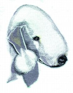 Bedlington Terrier embroidery design
