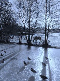 Apperley Bridge; surely does look icy