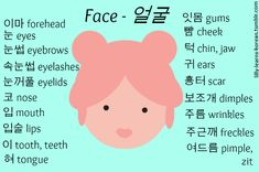 Learning Korean Parts of the Face Korean Learning Apps, Korean Language Learning, Learn A New Language, Learning Italian, Learn Korean Alphabet, Learn Hangul, Korean Writing, Korean Phrases, Korean Lessons