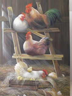 Rooster and Hen Art