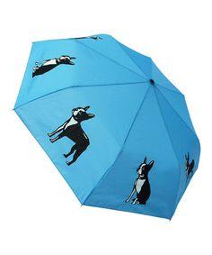 Look what I found on #zulily! Boston Terrier Umbrella #zulilyfinds