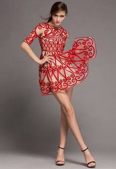 Natural Glow Red Embossment Mesh Dress