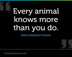 Every animal knows more than you do. - Native American Proverb