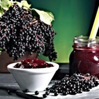 Elderberry Recipes: Elderflower Liqueur This elderberry liqueur is based on an Italian limoncello- I'd maybe leave out the Limon rind for a flowery enhancement. Elderberry Growing, Elderberry Bush, Elderberry Benefits, Elderberry Recipes, Elderberry Syrup, Elderberry Gummies, Italian Limoncello Recipe, Elderberry And Elderflower, Homemade Cough Syrup