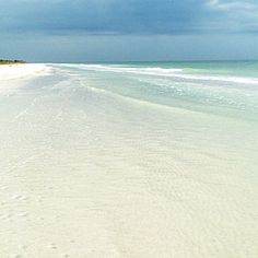 Caladesi Island State Park , Florida  I Island is just north of Clearwater Beach. Take a private boat or the Caladesi Connection ferry to stroll the 3-mile beach, kayak its mangrove trails, or hike under live oaks.