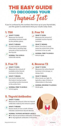 How to Decode Your Thyroid Tests If you're confused by the types of hormones that show up on your thyroid labs, use this guide to understand what your results mean for your health. Hashimoto Thyroid Disease, Hypothyroidism Diet, Thyroid Issues, Thyroid Problems, Autoimmune Disease, Symptoms Of Thyroid Cancer, Hashimotos Disease Diet, Thyroid Levels, Thyroid Cure