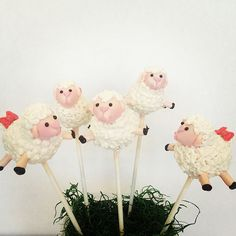 Adorable Sheep Cake pops- perfect for Easter or a Baby Shower! Rice Krispie Cakes, Rice Krispies, Animal Cake Pops, Cake Push Pops, Easter Cake Pops, Sheep Cake, Easter Traditions, Easter Treats, No Bake Cake
